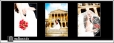 Iowa State Capitol Wedding Picture Collage